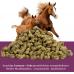 Luzerne-Cobs (25 kg Sack, bis maximal 3 Stück)